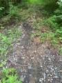 956 Nicey Gap Road - Photo 3