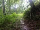 265 Logging Trail - Photo 5