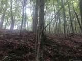265 Logging Trail - Photo 6