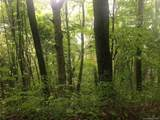 265 Logging Trail - Photo 7