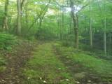 TBD Off East Fork Road - Photo 1