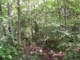 Tract C Balsam Ridge Road - Photo 12
