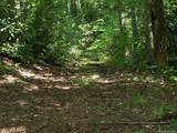 Tract C Balsam Ridge Road - Photo 14
