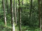 Tract C Balsam Ridge Road - Photo 17