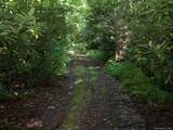 Tract C Balsam Ridge Road - Photo 3