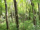 Tract C Balsam Ridge Road - Photo 5