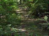 Tract C Balsam Ridge Road - Photo 9