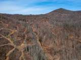 0 Simms Fork Road - Photo 8