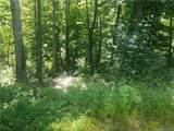 00 Spring Valley Trail - Photo 4