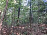 0 Panther Mountain Road - Photo 1