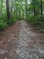 1613 Nancy Mountain Road - Photo 12