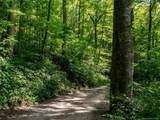 142 +-ACRES Walker Mountain Lane - Photo 25