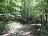 142 +-ACRES Walker Mountain Lane - Photo 29