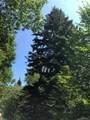 4406 Greenspire Drive - Photo 5