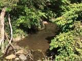 0 Cane Creek Cemetary Road - Photo 1