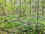 Lot 229 Redbird Drive - Photo 13