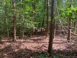 Lot 229 Redbird Drive - Photo 5