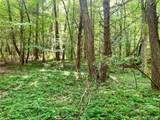 Lot 229 Redbird Drive - Photo 10