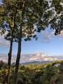 2133 Mountain Air Drive - Photo 46