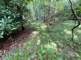 999 Lost Cove Road - Photo 6
