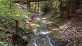 81 Creekside Loop - Photo 32