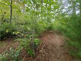 1912 White Tree Trail - Photo 11