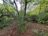 1912 White Tree Trail - Photo 9
