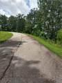 Lot 331 Willow Top Lane - Photo 6