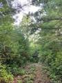 Lot 601 Lost Mine Trail - Photo 12