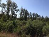 00 Logging Road - Photo 12