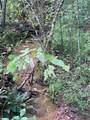 0 Dogwood Way - Photo 10