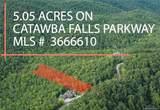 Lot 213 Catawba Falls Parkway - Photo 5