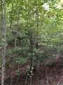 2874 Camp Creek Road - Photo 18