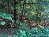999999 Holbert Cove Road - Photo 23
