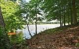 300 Lake Providence Drive - Photo 4