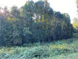 19.404 acres Black Oak Ridge Road - Photo 4