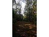 LOT 100 Deep Woods Lane - Photo 4
