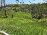 (Pasture Land) Lower Gabriels Creek Road - Photo 1