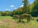 4534 Poplar Creek Road - Photo 37