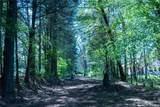 559 Rustlewood Way - Photo 45