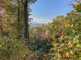 215 Crossvine Trail - Photo 4
