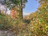 215 Crossvine Trail - Photo 6
