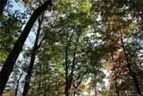 5.8 acres Cedar Creek Road - Photo 10