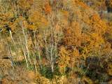 Lot 31 Little Mountain Road - Photo 11