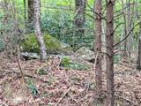 0 Buffalo Shoals Road - Photo 3