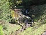 3391 Coxes Creek Road - Photo 10