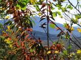1345 Linville Drive - Photo 35