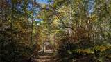 Lot #6 on Rush Ridge Trail - Photo 11