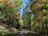 Lot #6 on Rush Ridge Trail - Photo 15