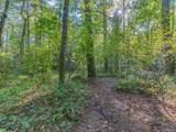 111 Huckleberry Ridge Lane - Photo 19